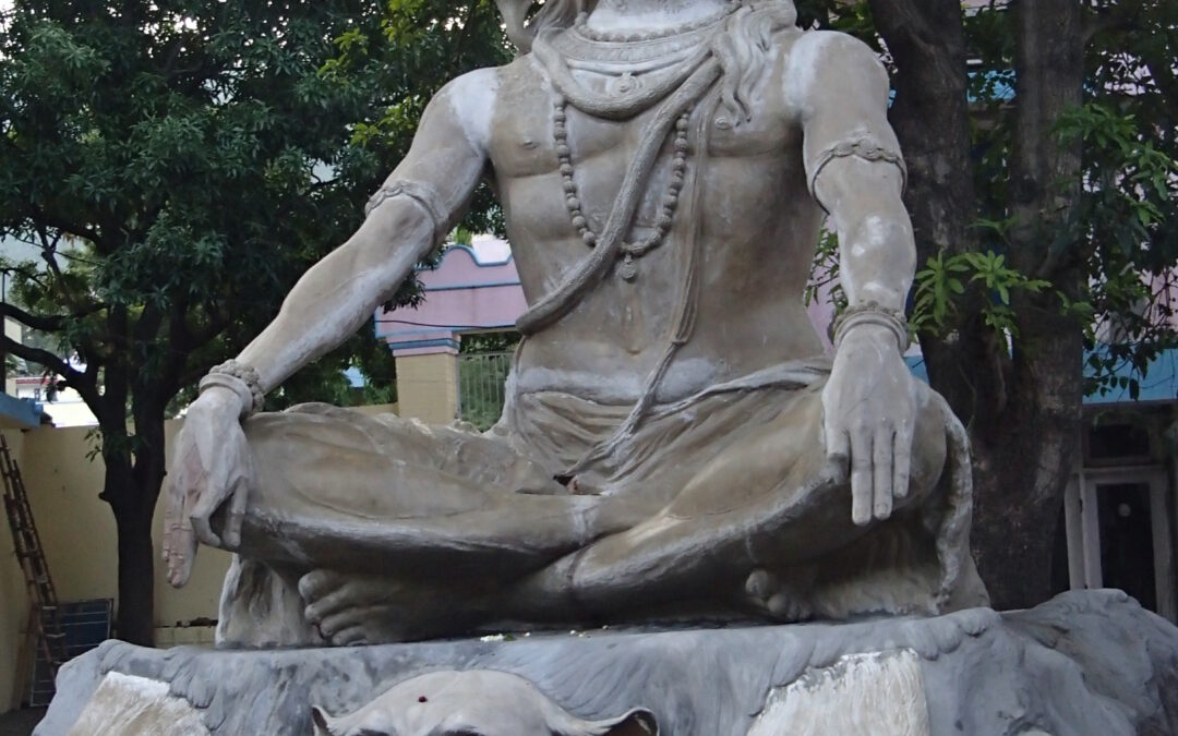 Descubre y conoce los Yoga Sutras de Patanjali